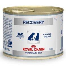 ขาย Royal Canin Recovery อาหารสำหรับสุนัขและแมว พักฟื้น 195G จำนวน 1 กระป๋อง ใน Thailand