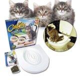 ซื้อ Sinlin Citikitty ชุดฝึกแมวเข้าห้องน้ำ สำหรับแมวทุกวัย Cat Toilet Training รุ่น Ctk20 1As ถูก