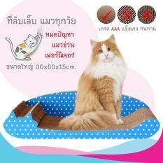 โปรโมชั่น ที่ลับเล็บแมวรุ่น Sleeping Cat สีฟ้า ถูก