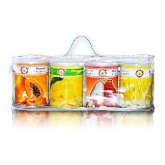 Thai Ao Chi ผลไม้รวมอบกรอบ Mixed Fruits Can - Set B 200 gm/pack (4 กระป๋อง)