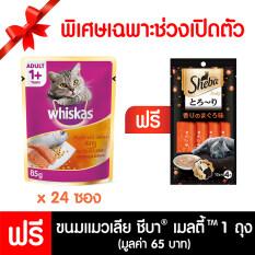 ส่วนลด สินค้า Whiskas®แบบเพาช์ แซลมอนปลาทู 85G 24 ซอง