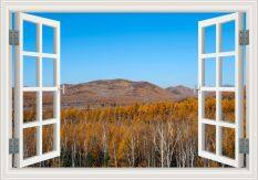 ราคา ราคาถูกที่สุด 80X120Cm 3D Window View Sunny Forest Blue Sky Wall Sticker High Quality Removable Wallpaper Home Decor