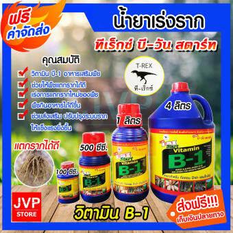 **ส่งฟรี**น้ำยาเร่งราก วิตามินบี-1 B1 มี 4ขนาดให้เลือก 100ซีซี 500ซีซี. 1ลิตร 4ลิตร ทีเร็กซ์ (Root supplement)บีวัน-สตาร์ท  ช่วยให้พืชแตกรากได้ดี สี ขนาด 100 ซีซี.