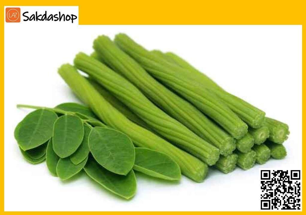 มะรุมแคปซูล บรรจุ 100 แคปซูล (moringa Leaves Capsule) ขนาด 100 G. By Sakdashop.