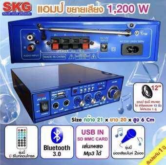 YCHเครื่องแอมป์ขยายเสียง 1,200 W