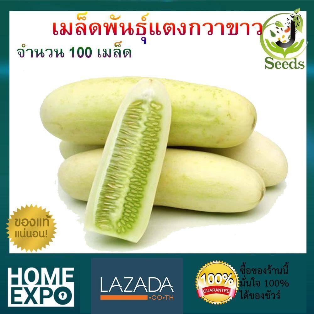 เมล็ดพันธุ์แตงกวาขาว จำนวน 100 เมล็ด ปลูกง่าย โตเร็ว By Jenseed แตงกวา เมล็ดพันธุ์ เมล็ดพันธุ์ผัก เมล็ดพันธุ์พืช ผักสวนครัว.