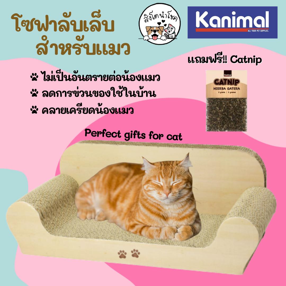 ??สิงโตนำโชค?? โซฟาลับเล็บแมว ของเล่นแมว เหมาะกับแมวทุกวัย ที่ฝนเล็บแมว ที่ข่วนเล็บแมว กระดาษลูกฟูกฝนเล็บแมว.