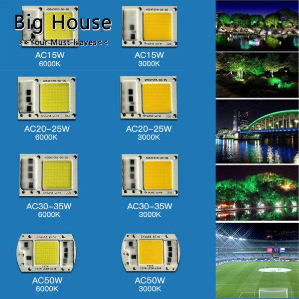 Big House 15W/20W/30W/50W 110V/220V Chip COB Không Có Ổ Đĩa Đèn Chiếu Sáng Ngoài Trời Đèn LED COB