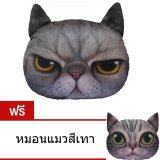 ส่วนลด 9Sabuy หมอนแมว รุ่น Plc002 Plc003 สีเทาเข้ม แถมฟรี หมอนแมว สีเทา