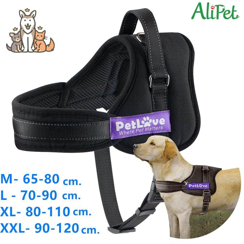 ขนาดใหญ่สายจูงสุนัขและสายคล้องคอปรับสายรัดสบายสัตว์เลี้ยงอุปกรณ์ - พราง (m).