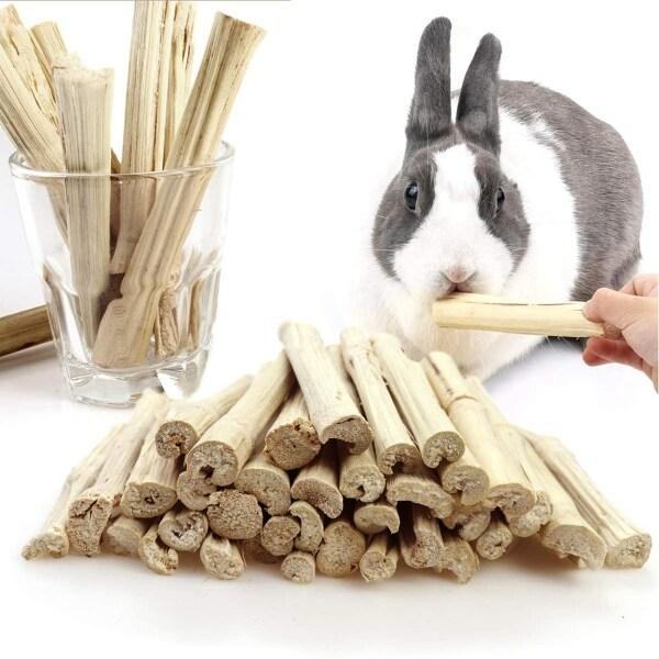 MALIMALI Con vẹt Chinchilla Thỏ Làm sạch răng Molar Đối xử Đồ ăn nhẹ cho thú cưng Đồ chơi nhai Tre ngọt ngào Thanh nhánh