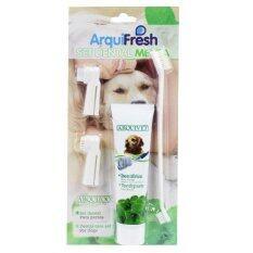 Arquifresh ยาสีฟันสำหรับสุนัข รสมินท์ ขนาด 100 กรัม พร้อมแปรง 1 ชุด By T.u. Pet Shop.