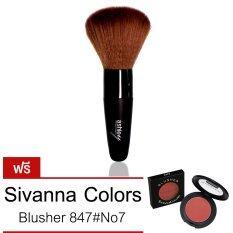 ราคา Ashley Premium Brush รุ่น Aa 5 Black แถมฟรี Sivanna Colors Blusher 847 No 7 ใหม่ ถูก