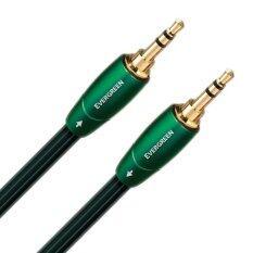 ซื้อ Audioquest Rca Cable รุ่น Evergreen Mini 1M ถูก ใน ไทย