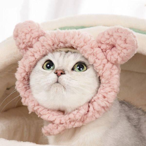 GA27524 Dễ Thương Tai Gấu Cún Yêu Ăn Mặc Đẹp Tên Chó Trang Phục Mèo Mèo Mũ Đội Đầu Cho Chó Mũ Thú Cưng