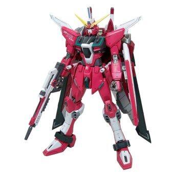 Bandai MG Infinite Justice Gundam 1/100