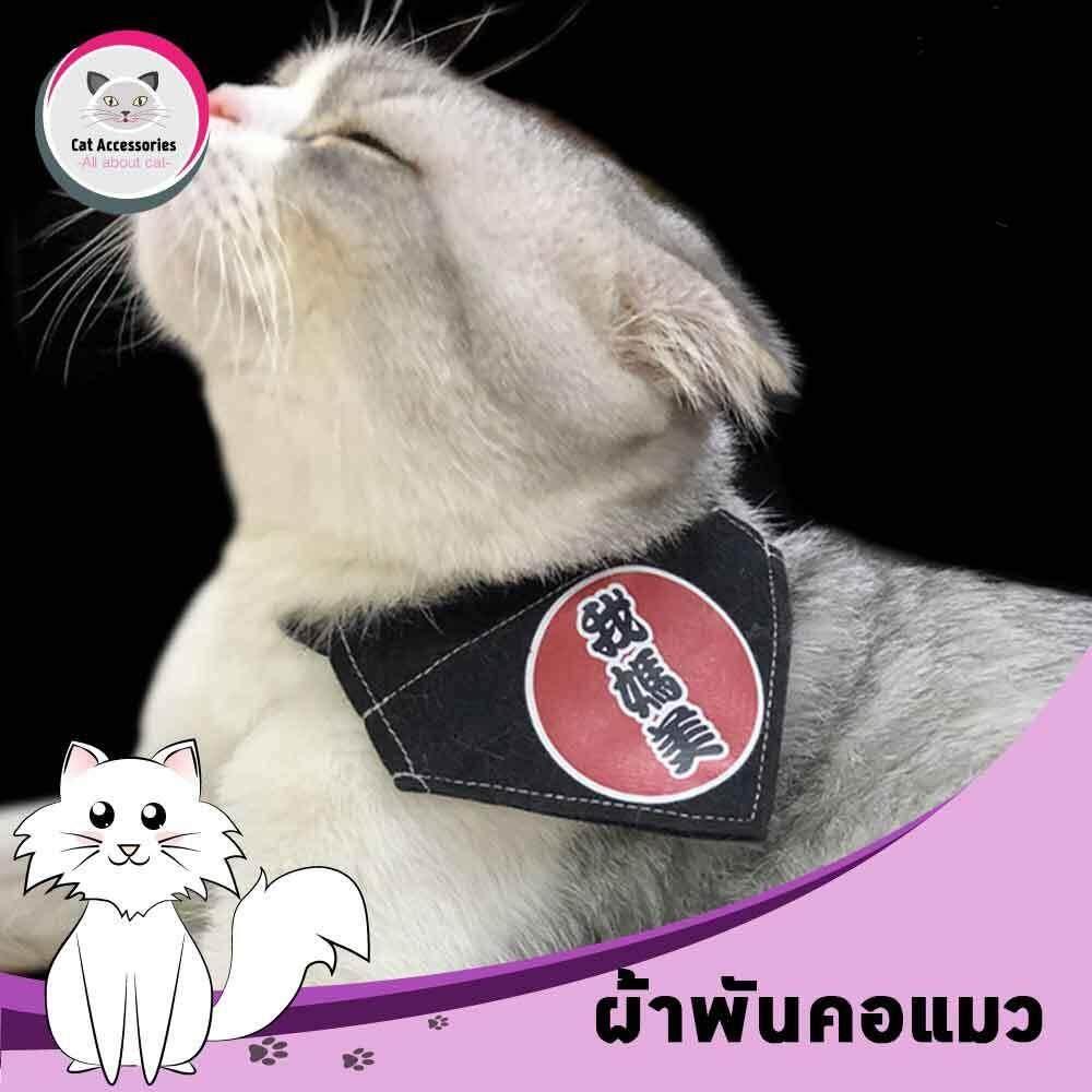 ผ้าพันคอสำหรับแมว ผ้าพันคอทรงสามเหลี่ยมสำหรับแต่งตัวแมว ผ้าพันคอสัตว์เลี้ยง สีดำ ไซส์ M สำหรับแมวที่มีรอบคอ 35ซม. By Cat Accessories.