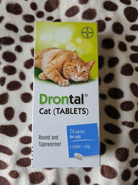 Drontal Cat (1 กล่อง 24 เม็ด) ยาถ่ายพยาธิแมว หมดอายุ 09/2023
