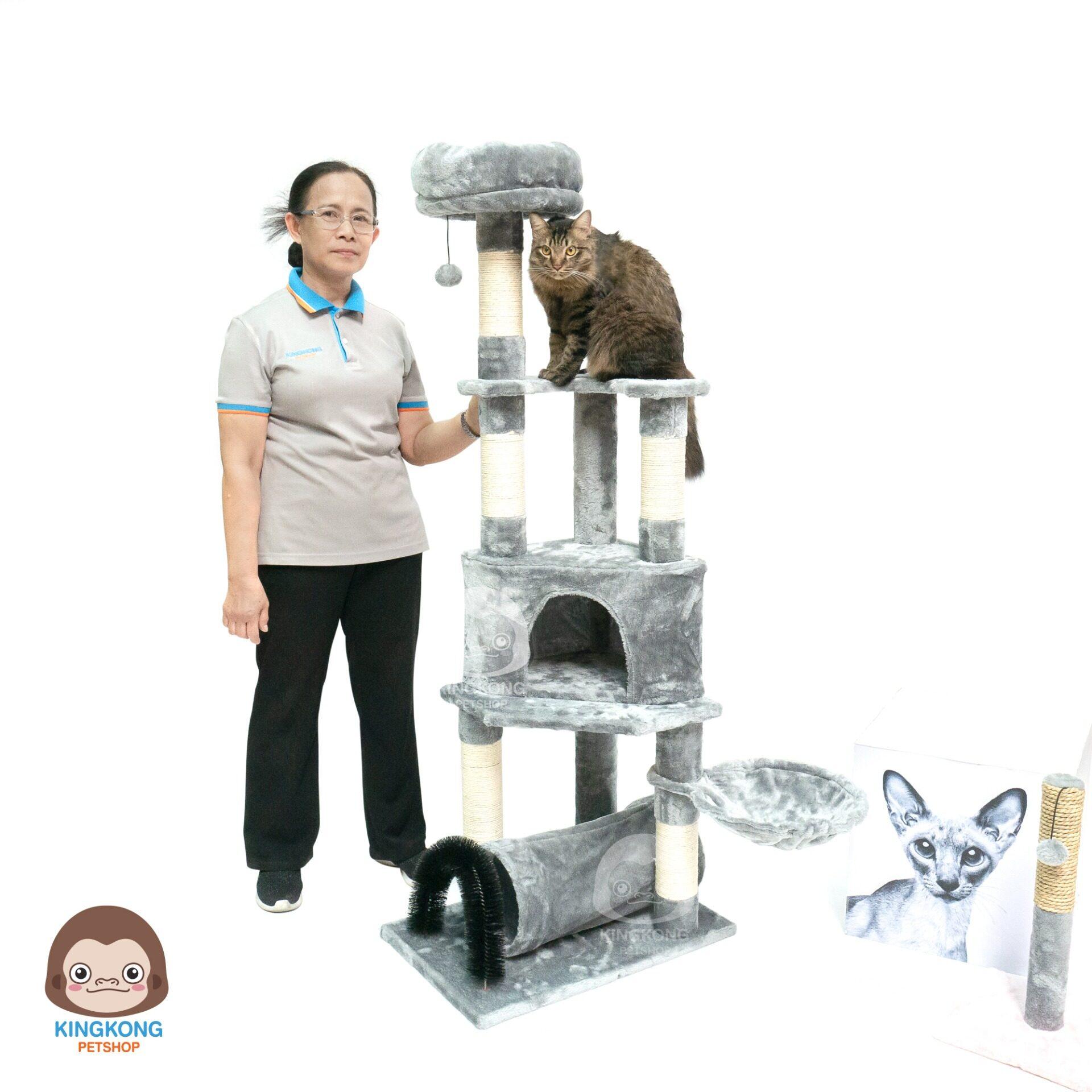 คอนโดแมว บ้านแมว Bongo Cat Tree มั่งมี สีเทา 60x40x150 cm.