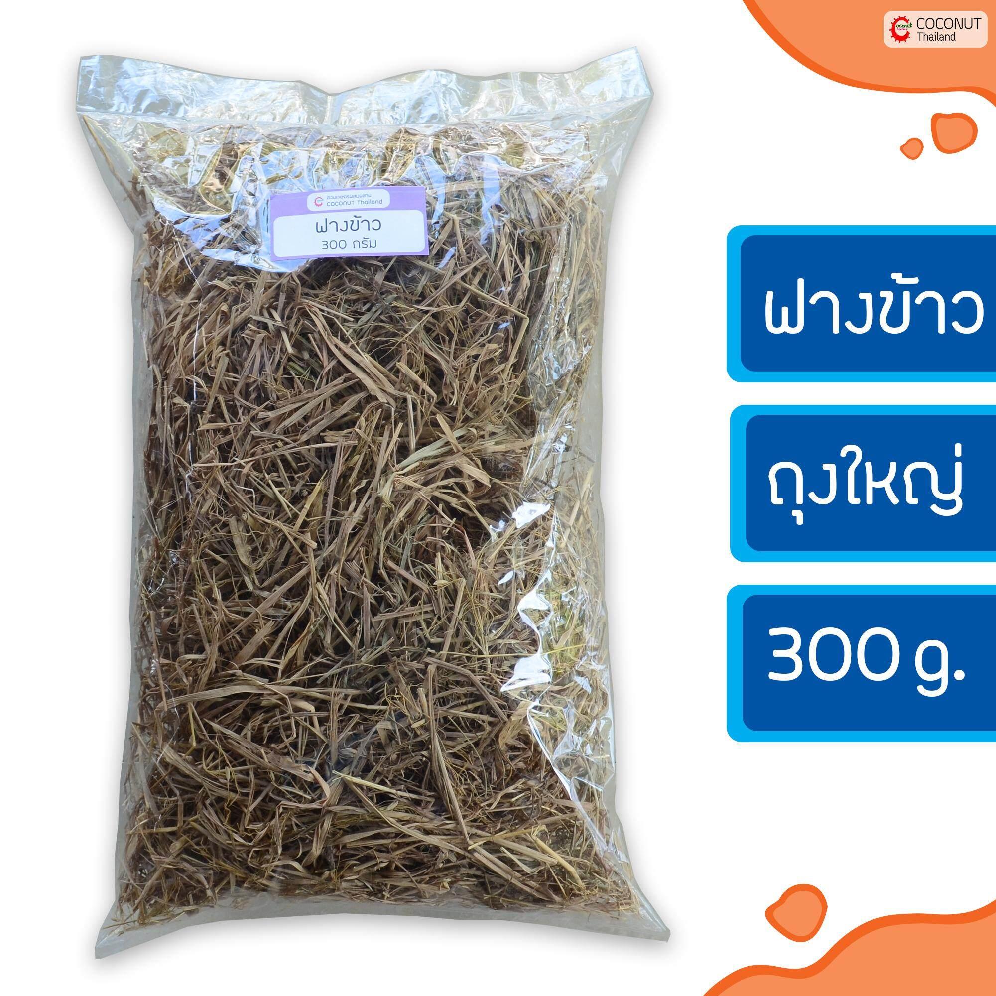 ฟางข้าว 300 G. สำหรับคลุมดินรักษาความชื้น ป้องกันหญ้าและวัชพืชงอก เพิ่มอินทรีย์วัตถุให้กับดิน By Coconut Thailand.