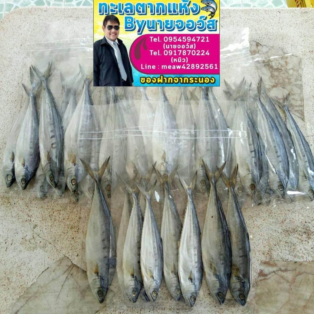 ปลาเสียดนกกระยาง