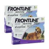 ซื้อ Frontline Plus For Dogs 20 40 Kg กล่องละ 3 หลอด 2 Units Thailand