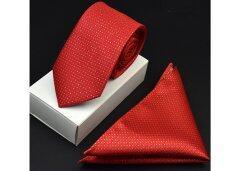 ขาย Gadgetz เนคไท ผ้าเช็ดหน้าสูท Necktie Pocket Handkerchief รุ่น E201 กรุงเทพมหานคร