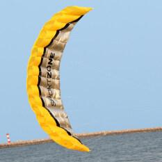 High Quality 2.5m Yellow Dual Line Parafoil Kite Withflying Tools Power Braid Sailing Kitesurf Rainbow Sports Beach By Varanasi.