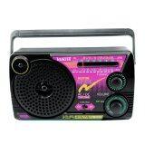 ซื้อ Histar วิทยุ 3 ถ่าน Am Fm Usb Ac Dc รุ่น 111Usb