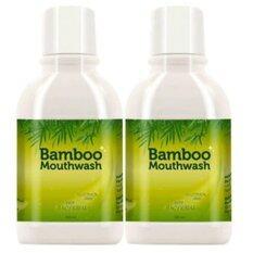 ซื้อ Hylife Bamboo Mouthwash น้ำยาบ้วนปาก ขจัดคราบหินปูน ชา กาแฟ 300 Ml 2 ขวด ออนไลน์