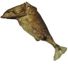 ความคิดเห็น Hyper Lab หมอนปลาทู Thai Food Pillow Fish 80 Centimeter หมอนอิงอาหาร