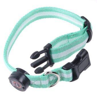 ITandHome ปลอกคอสุนัขพร้อมไฟ LED กันโดนรถชนเวลากลางคืน (สีเขียว)