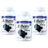 ซื้อ Lynae Bilberry Premium Extract 375 Mg 60 Capsule Vitamin Usa ไลเน่ สารสกัดจากบิลเบอร์รี่ ช่วยปรับการมองเห็น ควบคุมน้ำตาลในเลือด ป้องกันโรคต้อกระจก 60 แคปซูล 3 ขวด ออนไลน์ ไทย
