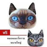 ซื้อ 9Sabuy หมอนแมว รุ่น Plc014 Plc015 ลายวิเชียรมาศ แถมฟรี หมอนแมวโคราช สมุทรปราการ