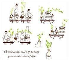 ขาย ซื้อ สติ๊กเกอร์ติดผนัง Bottle Green Leaves รุ่น Transparent Wall Sticker ใน กรุงเทพมหานคร