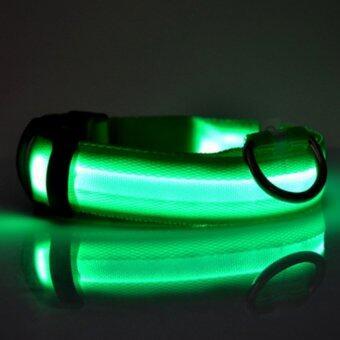 ปลอกคอ เรืองแสง LED สำหรับ สุนัข แมว สัตว์เลี้ยง (สีเขียว)
