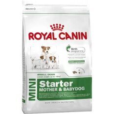 ราคา Royal Canin Mini Starter Mother Puppy อาหารแม่สุนัข และลูกสุนัข หย่านม ถึง 2 เดือน ขนาด 8 5Kg Royal Canin เป็นต้นฉบับ