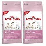 ขาย ซื้อ Royal Canin Babycat 400G 2 Units อาหารสำหรับลูกแมวอายุ1 4เดือน และแม่แมวตั้งท้อง ขนาด400กรัม 2ถุง ใน Thailand