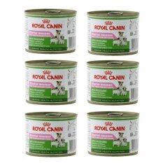 ส่วนลด สินค้า Royal Canin Starter Mousse อาหารเปียกแม่สุนัข และลูกสุนัขหย่านม 2 เดือน แบบกระป๋อง ขนาด 195G 6 Units