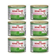 ขาย Royal Canin Starter Mousse สำหรับแม่สุนัขพันธุ์เล็กช่วงตั้งท้องถึงระยะให้นม และลูกสุนัขพันธุ์เล็กหย่านม 3 เดือน ขนาด195G X 6 กระป๋อง กรุงเทพมหานคร