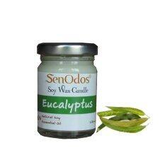 ซื้อ Senodos เทียนหอม อโรม่า Eucalyptus45 Scented Soy Candle Aromatherapy 45G กลิ่นยูคาลิปตัสแท้ ถูก ใน กรุงเทพมหานคร
