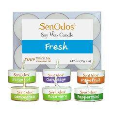 Senodos Fresh Emotional Scented Soy Candles With Pure Essential Oils Tealights 15G X 6 Pcs Bergamot Clary Sage Grapefruit Lemongrass Peppermint Rosemary กรุงเทพมหานคร