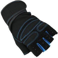 ขาย Super Sport ถุงมือ ฟิตเนส ยกน้ำหนัก เทรนนิ่ง Sports Weight Lifting Half Finger Gloves Size M Blue เป็นต้นฉบับ