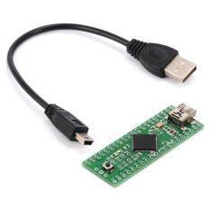 ขาย ซื้อ Teensy 2 Usb Avr Development Board At90Usb1286 Isp U Disk Keyboard Mouse For Arduino