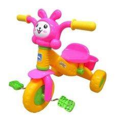 ความคิดเห็น Thaiken รถจักรยานเด็ก 3ล้อ Rabbit สีแดง ชมพู 0082 Rd