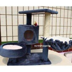 ราคา ที่นอนแมว คอนโดแมว ของเล่นแมว บ้านแมว ที่ลับเล็บแมว ที่ฝนเล็บแมว สีกรมท่า