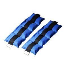 ขาย ซื้อ ถุงทรายถ่วงน้ำหนัก 3Lb 1 5 Kg สีน้ำเงิน ใน กรุงเทพมหานคร