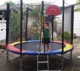 ราคา Trampolinejump แทรมโพลีน 8 ฟุต สปริงบอร์ดออกกำลังกาย Colorful แถมฟรี ผ้าคลุมกันฝน และชุดแป้นบาส ที่สุด