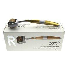 โปรโมชั่น Zgts Titanium Dermaroller เข็มกลิ้ง รักษาหลุมสิว เดอร์มาโรลเลอร์ From France Microneedle Roller หัวเข็ม 1 00 Gold